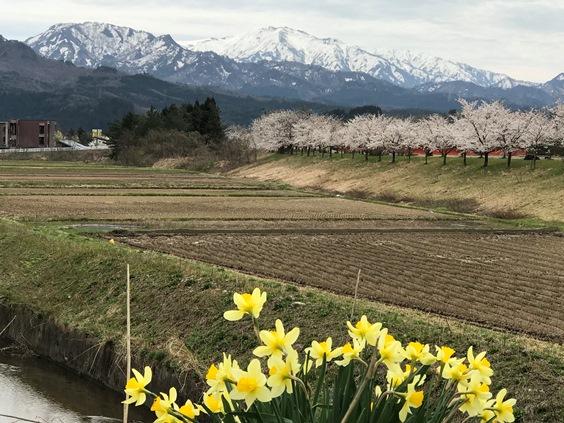 【新潟】高瀬温泉の宿(関川村)