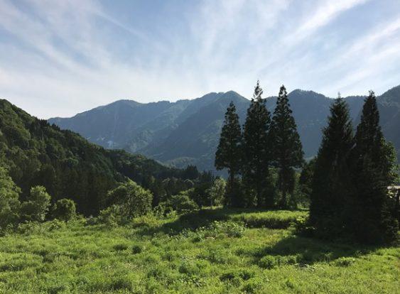 【長野】秋山郷の宿