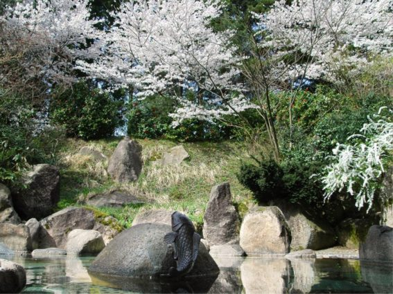 【新潟】村杉温泉 風雅の宿 長生館