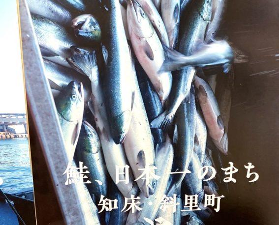 【北海道】斜里町の宿